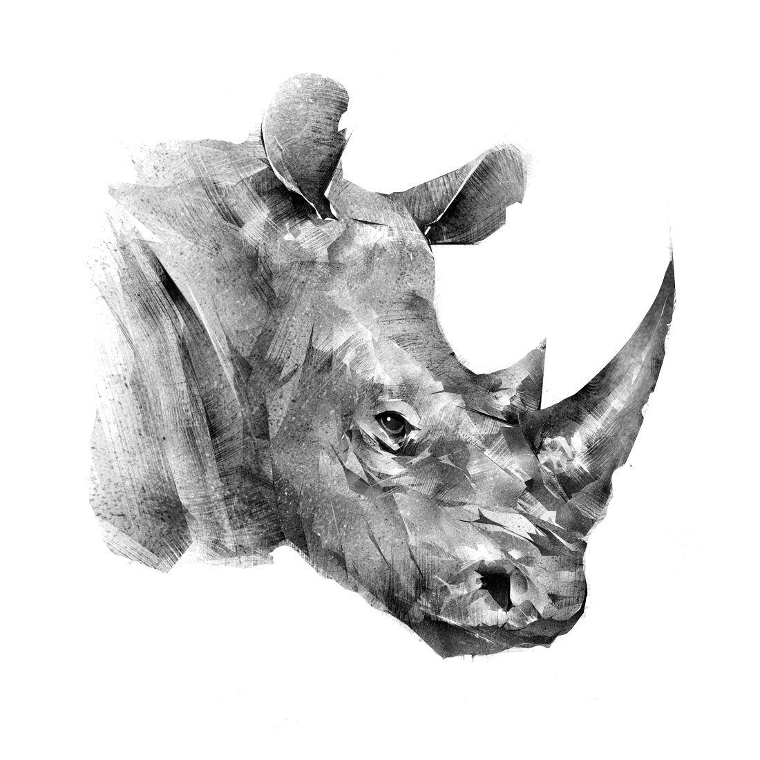 Rhino Innovations Group